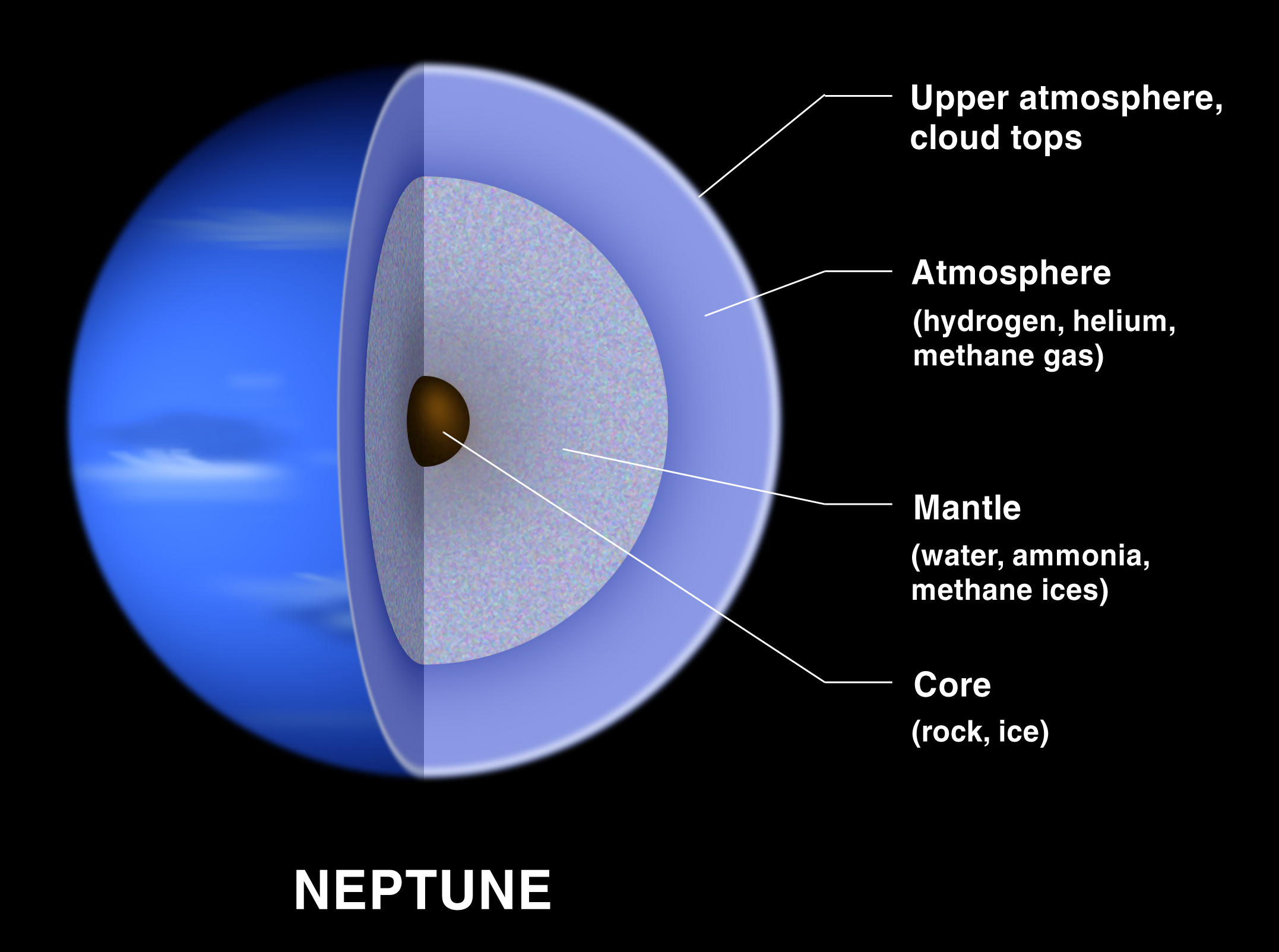 Interior layers of Neptune