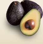 Image credit California Avocados