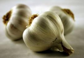 Garlic. Image credit San Antonio Life