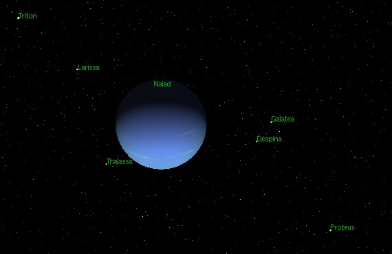 Relative distances of the moons from Neptune. Image credit Astronomy Matters