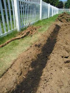 The asparagus trench. Image credit: Kitchen Gardeners International