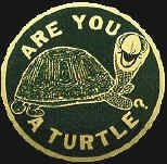 The turtle could spend his whole life hiding in his shell, or make progress by sticking his neck out. Are you a turtle? Image credit Wally Schirra