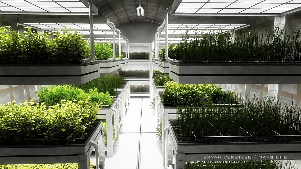 The proposed greenhouse. Image credit Bryan Versteeg